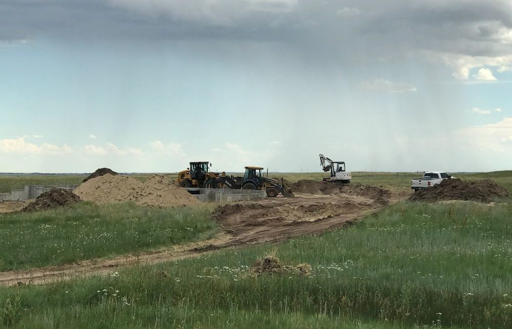 The Haines Home is Backfilling!