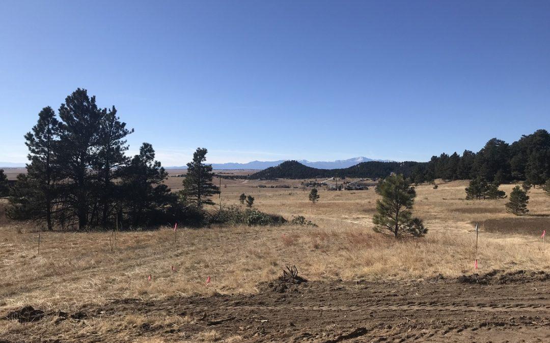 Views of Pikes Peak!